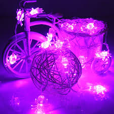Halloween Spider Lights by Halloween Supplies Archives For Living