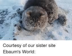 sister site 25 best memes about ebaums world ebaums world memes