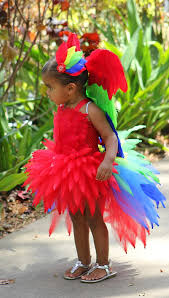 Halloween Costumes Parrots 255 Costumes Images Costumes Halloween Ideas
