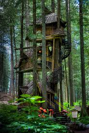three story tree house british columbia canada pics