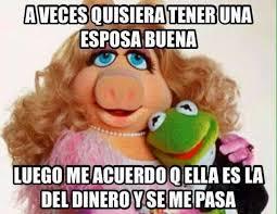 Memes Rana Rene - los mejores memes de la rana rene