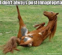 Meme Generator I Don T Always - meme creator i don t always post innapropriate animal pictures on