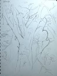 stefie sketches