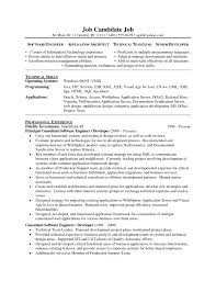Technology Skills Resume Examples Technical Expertise In Resume Free Resume Example And Writing