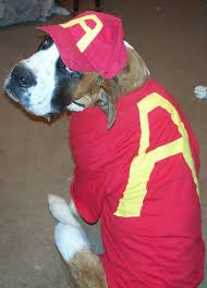 Alvin Halloween Costume Pet Halloween Costume Contest 2009 U2013 Petlvr Archives