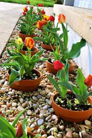 Landscaping Borders Ideas Landscape Edging Ideas With Bricks Flower Bed Borders Garden For