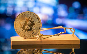 January Hold Cryptocurrency Picks Francis Jeff Francis Author At Bitcoinist Com