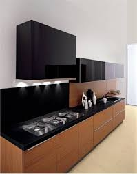 modern kitchen design ideas with black glossy kitchen cabinetry