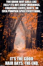 Fall Meme - autumn meme generator imgflip