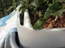 backyard aquaponics u2022 view topic how to remove bees from aquaponics