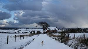 Snow Scotland News In Pictures Snowbound In Scotland