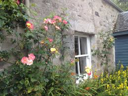 rose cottage self catering holiday cottage