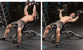 Incline Dumbell Bench Press Build Big Pecs One Angle At A Time With These Press Variations