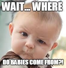Where Do Memes Come From - skeptical baby meme imgflip