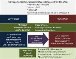 short term gestation long term risk prematurity and chronic