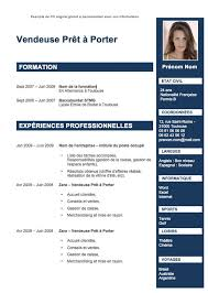 layout template en français 23 best cv images on pinterest resume sle resume and job