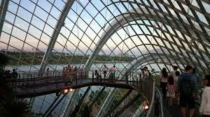 singapore gardens by the bay cloud forest dome visions of travel
