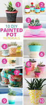 10 more super cute ways to diy your flower pots terracotta