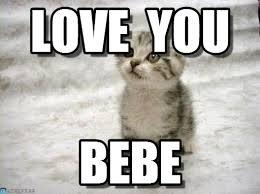 Sad Memes About Love - love you sad cat meme on memegen