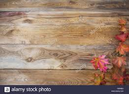 thanksgiving concept with fall maple leaves on wooden background