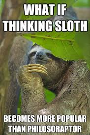 Sloth Jokes Meme - what if thinking sloth becomes more popular than philosoraptor