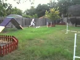 Dog Backyard Playground by 32 Best Images About Licky On Pinterest Dog Park Home Made