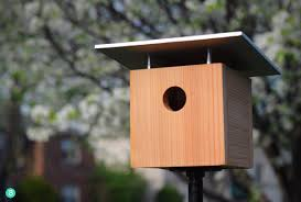 12 stylish and easy diy birdhouses and feeders curbly