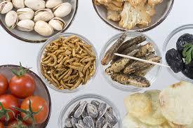 insectes dans la cuisine recettes d insectes tous nos conseils pour cuisiner les insectes