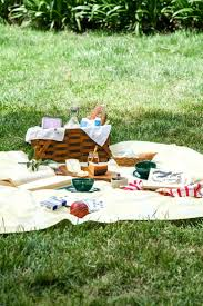Fitted Picnic Tablecloth 562 Best Picnic Images On Pinterest Summer Picnic Picnic
