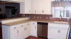 How To Change Kitchen Cabinet Doors Replacement Kitchen Cabinet Doors For Mobile Homes Imanisr Com