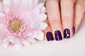 beautiful manicured nails with purple nail varnish and a tiny