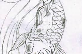 koi fish sketch 8 good koi fish drawings biological science