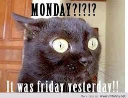 Thursday Meme Funny - deluxe 29 thursday meme funny wallpaper site wallpaper site