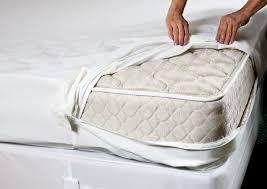 Sofa Bed Mattress Topper Queen by Hide A Bed Mattress Pad Best Mattress Decoration