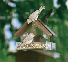 clear plastic window bird feeder duncraft com duncraft 5273 eco friendly window bird feeder