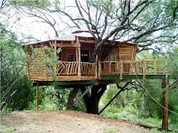 house plans treehouse plans livable tree houses cost of