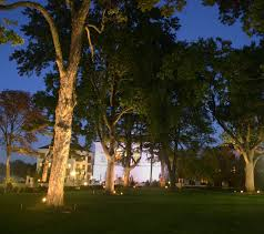 outdoor tree lights for summer asheville special event outdoor lighting for your wedding