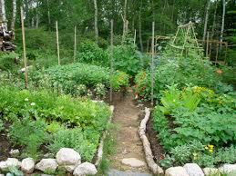niki jabbour the year round veggie gardener lebanese kitchen