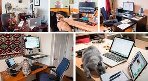 Home Desks Furniture The Best Home Office Furniture And Supplies Wirecutter Reviews