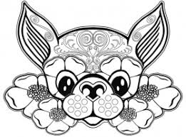 chihuahua coloring page coloring home