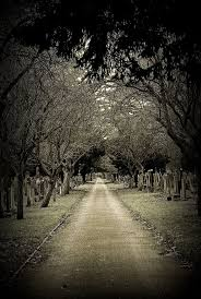 graveyard clipart black and white best 25 old cemeteries ideas on pinterest graveyards cemetery