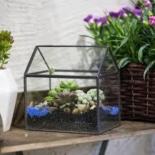 pet planters promotion shop for promotional pet planters on