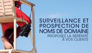 bureau d enregistrement nom de domaine l afnic lance frwatch un nouveau service de surveillance et de