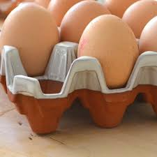ceramic egg tray ceramic egg tray with glaze 6 eggs terracotta uk