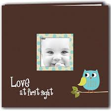 post bound scrapbook baby owl printed design postbound scrapbook album 12 x12 blue