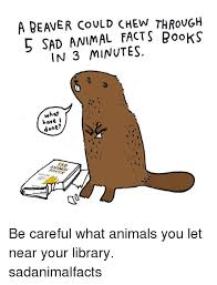 Sad Animal Memes - 5 sad animal facts books in 3 minutes what have done be careful