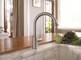Glacier Bay Single Handle Kitchen Faucet Bathroom Faucets Wonderful Wall Mount Faucet With Sprayer Wall