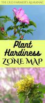 383 best vegetable garden inspo images on pinterest
