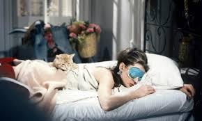 diamants sur canapé diamants sur canapé quand les chats font leur cinéma