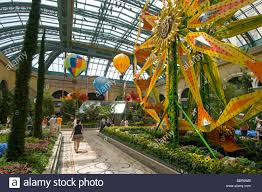 Botanical Gardens In Las Vegas Bellagio Conservatory Botanical Gardens Bellagio Hotel And